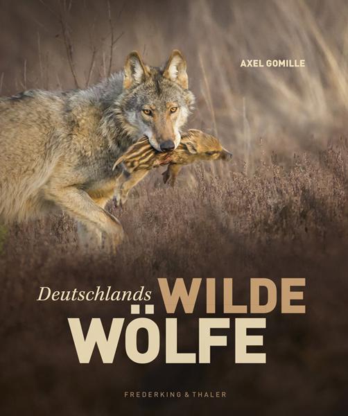 Axel Gomille | Wildlife Fotografie & Journalismus